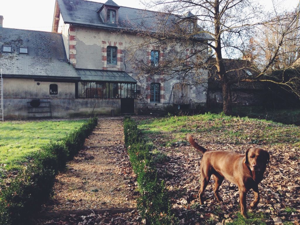 Figaro, the friendly chocolate labrador who was born and raised at the mill would often accompany us on walks around the property.